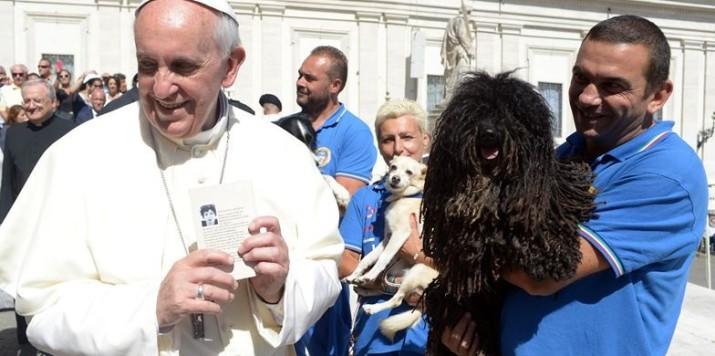 """Papa Francesco: """"Anche gli animali vanno in paradiso"""""""