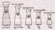 La storia delle unita' di misura del vino romano